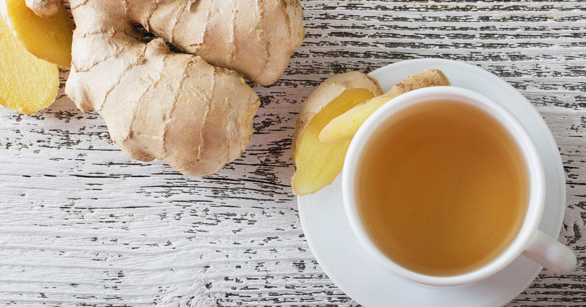 Ginger beside a cup of tea