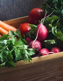 Ovarian Cancer Diet