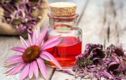Herbs for Kidney Cancer