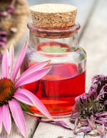 Using Herbs for Kidney Cancer Symptom Relief